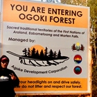 First Nations Group calls on MNRF Minister Yakabuski for Long-Term Ogoki Forest Management Licence