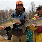 DNR To Update Wisconsin Walleye Management Plan
