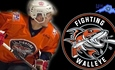 Fighting Walleye sign defenceman Joe McCollum