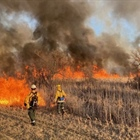 Governor Signs Emergency Order Elevated Fire Risk Across Wisconsin