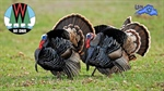 2021 Spring Turkey Season Opener April 21
