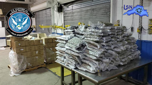 900 Lbs. of Marijuana Seized at the Port of Buffalo