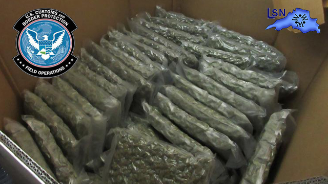 More Than 1500 Pounds Seized