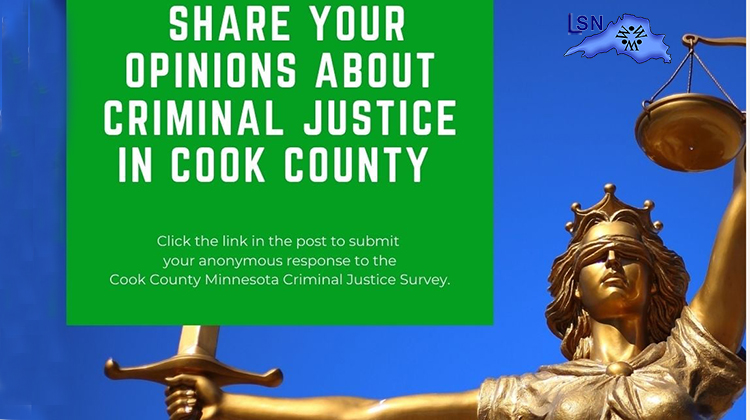 Cook County Offers Criminal Justice Survey