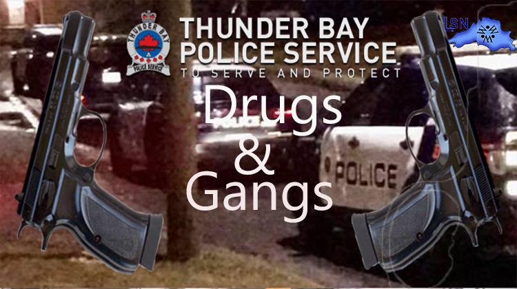 More Southern Ontario males arrested for drug trafficking