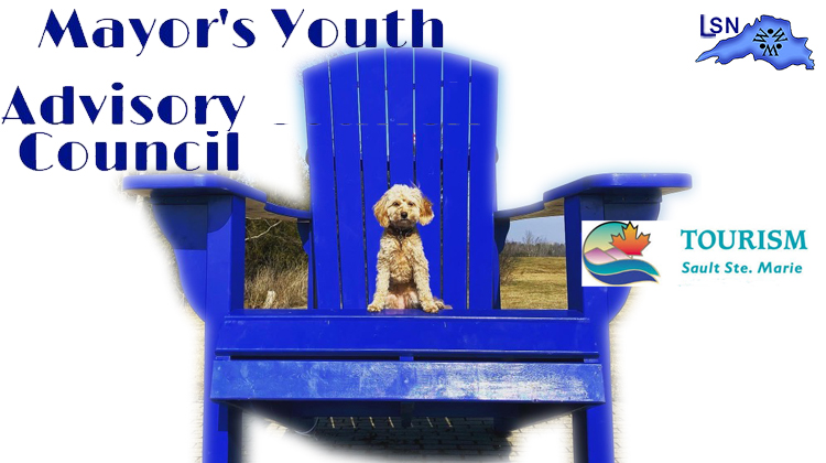 Mayors Advisory Council purchases Adirondack chairs