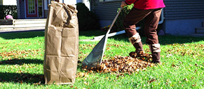 Curbside Leaf & Yard Waste Collection  Lake Superior News