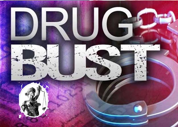 DRUG BUSTS BY THUNDER BAY POLICE ON LIMBRICK   ~ Lake Superior News