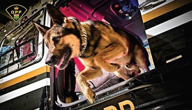OPP K9 Calendar    Lake Superior News