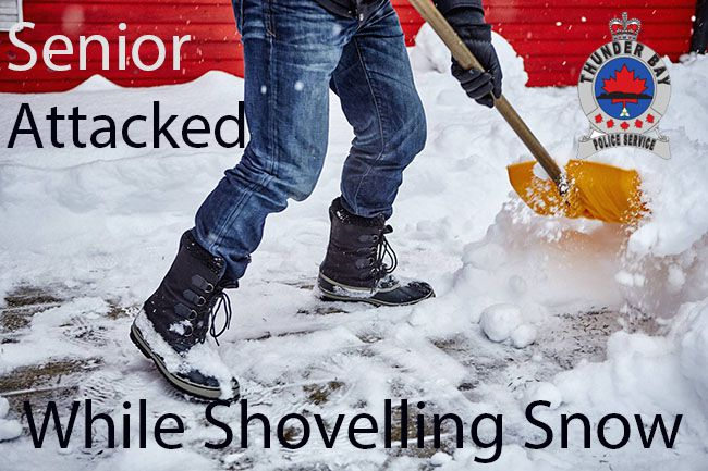 Senior Attacked while Shovelling Snow In front of his home   Lake Superior News