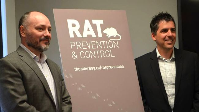 Rat Control City of Thunder Bay  Lake Superior News