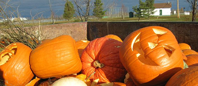 GREAT PUMPKIN COMPOST COLLECTION   Lake Superior News