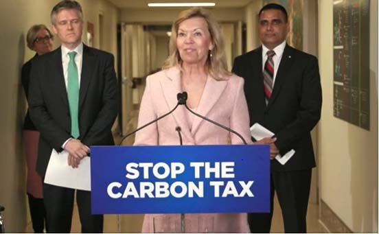 cost of the federal carbon tax for our healthcare system.  Lake Superior News