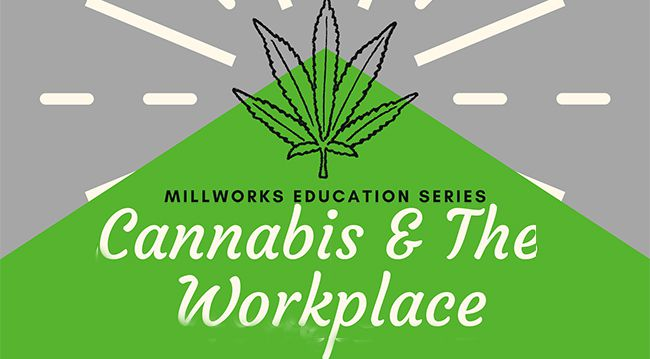 Cannabis & The Workplace  Lake Superior News