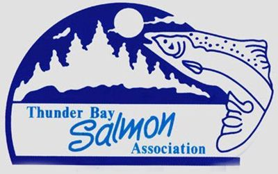 Thunder Bay Salmon Association Lake Superior News